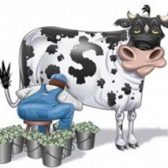 как зарабатывают инвесторы в Интернете